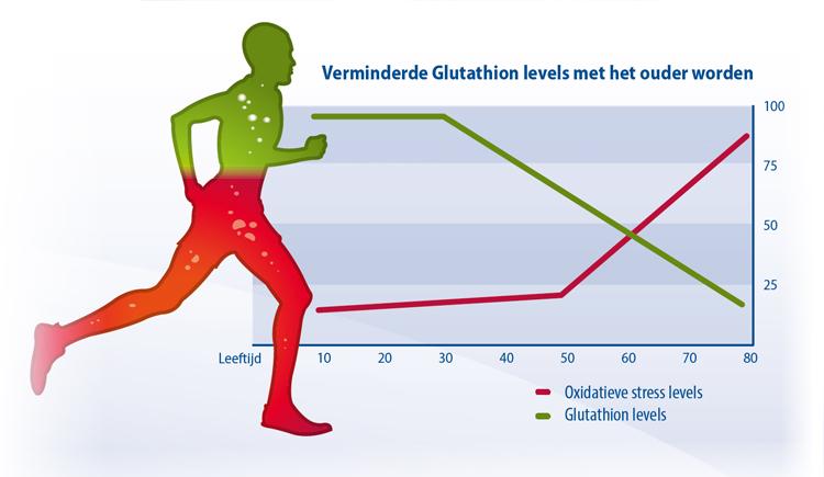 Verminderde Glutathion levels met het ouder worden