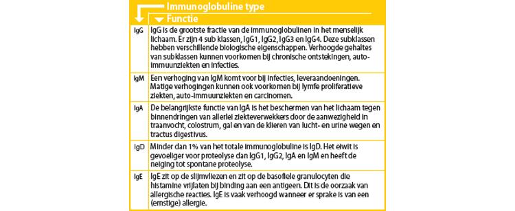 Immunoglobuline type (Functie)