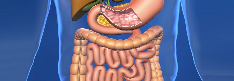 Behandelprotocollen Spijsvertering Maag Lever Darmen