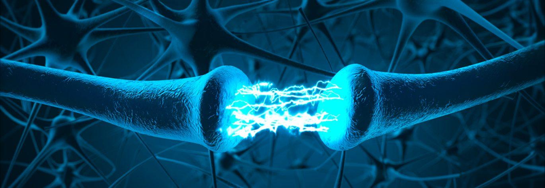 Bijscholing Neurotransmitters
