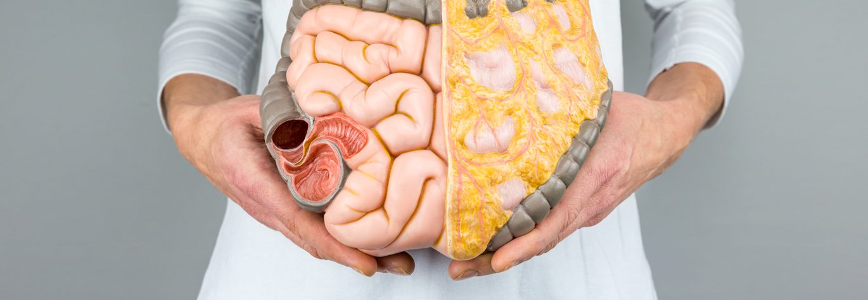Orthomoleculair Specialist Maag Lever Darmen